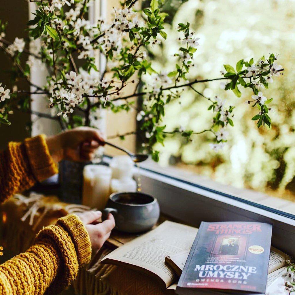 Uống trà xanh tốt nhất khi nào và công dụng của trà xanh? 1
